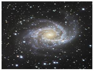 Spiral Galaxy in Antlia by Robert Gendler