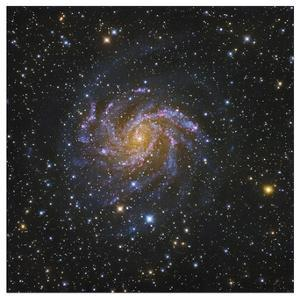 Spiral Galaxy in Cepheus by Robert Gendler