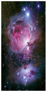 The Great Nebula in Orion by Robert Gendler