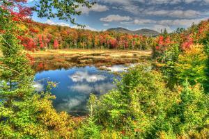 Adirondack Pond by Robert Goldwitz