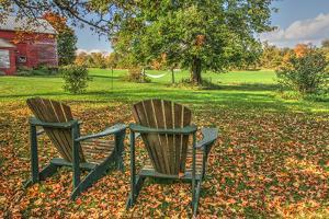 Barnyard Chairs by Robert Goldwitz