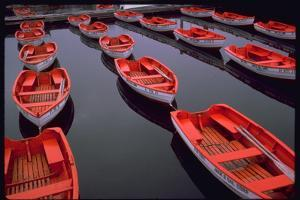 City Island Red Row Boats by Robert Goldwitz