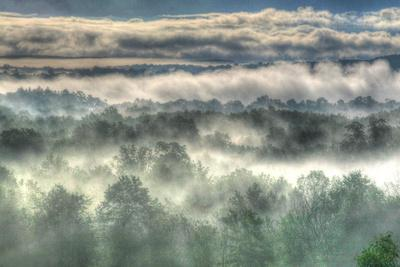 Gray Mist