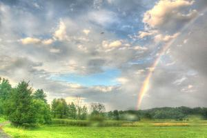 Rainbow and Heron by Robert Goldwitz