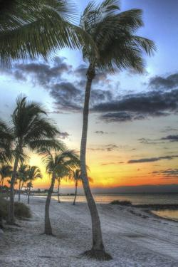 Smathers Beach Sunrise Vertical by Robert Goldwitz
