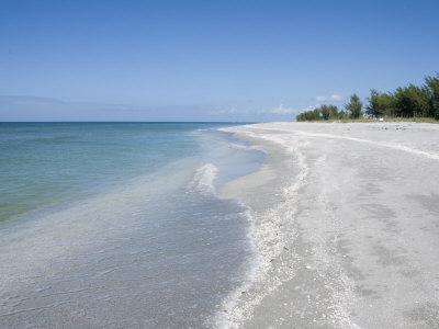 Beach Covered in Shells, Captiva Island, Gulf Coast, Florida, United States of America