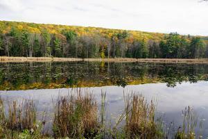 Lake Near Great Barrington, the Berkshires, Massachusetts by Robert Harding