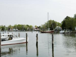 Oxford Bellevue Ferry, Oxford, Talbot County, Tred Avon River, Chesapeake Bay Area, Maryland, USA by Robert Harding