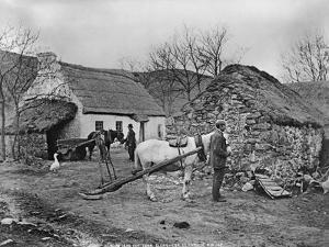 Farmyard Scene, Glenshesk, County Antrim, Ireland, C.1895 by Robert John Welch
