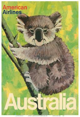 Australia - Koala Bear In Tree - American Airlines by Robert Jones
