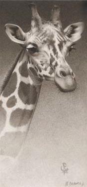 Jean, the Giraffe by Robert L. Caldwell