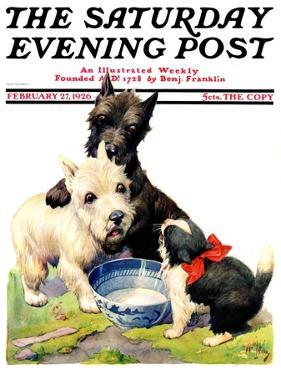 """Cat Guards Bowl of Milk,"" Saturday Evening Post Cover, February 27, 1926 by Robert L. Dickey"