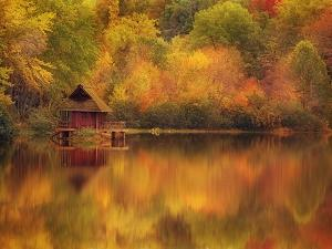 Wooden Cabin on Lake in Autumn by Robert Llewellyn