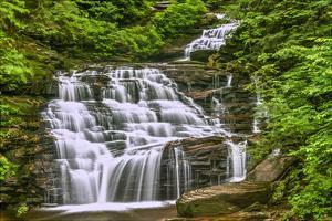 Conestoga Falls by Robert Lott