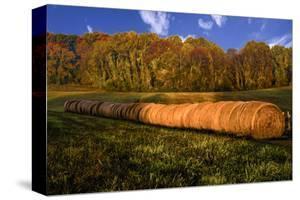 Hay Bales by Robert Lott