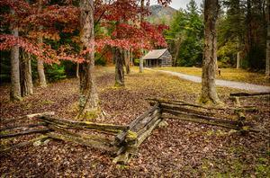 Smokies Cabin by Robert Lott