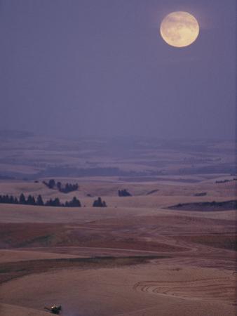 A Combine Chews Through an Undulating Field of Wheat under a Huge Full Moon