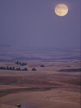 A Combine Chews Through an Undulating Field of Wheat under a Huge Full Moon by Robert Madden