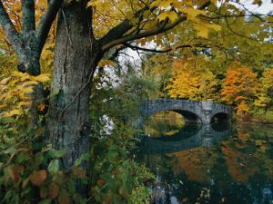 Autumnal View of a Stone Bridge by Robert Madden