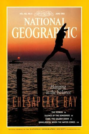 Cover of the June, 1993 National Geographic Magazine