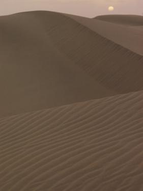 Sand Dunes by Robert Madden