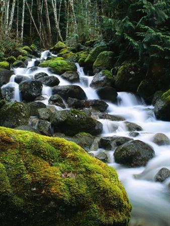 Stream Cascading Down Moss-Covered Rocks by Robert Marien