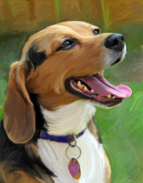 Beagle-Beagle by Robert Mcclintock