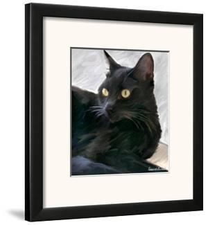 Black Cat Portrait by Robert Mcclintock