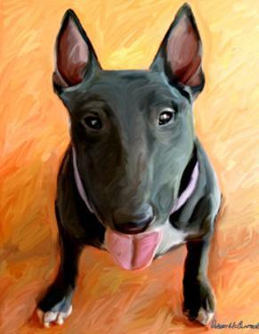 Bull Terrier Rhino by Robert Mcclintock