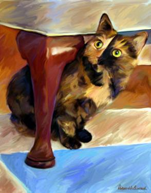 Calico Face by Robert Mcclintock