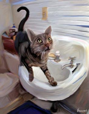 Gray Tiger Cat on the Sink by Robert Mcclintock
