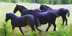 Guilford Horses II by Robert Mcclintock