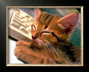 Kitten on Keys by Robert Mcclintock