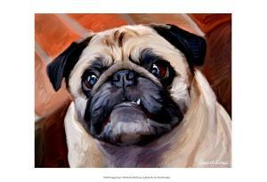Snaggle Pug by Robert Mcclintock