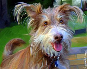 Terrier Hairspray by Robert Mcclintock