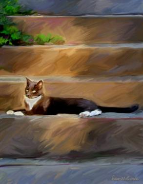 Trouble Cat by Robert Mcclintock