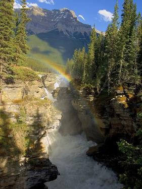 A Vertical Image of the Athabasca Falls on the Athabasca River with a Colorful Rainbow and Mount Ke by Robert McGouey