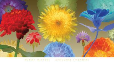 Sunflower Fireworks by Robert Mertens
