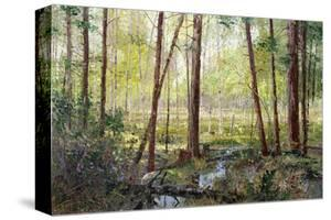 Forest Edge by Robert Moore
