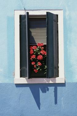 Windowwith Venetian Blinds and Shutters on Blue Wall. - Burano, Venice by Robert ODea