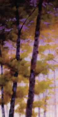 Purple Wood I by Robert Striffolino