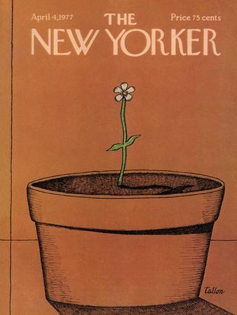 The New Yorker Cover - April 4, 1977