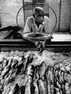 Employee of Fish Stall in the Old City Market by Robert W. Kelley
