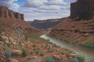 Along the Colorado by Robert Wavra