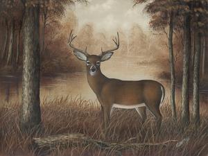 Autumn Buck by Robert Wavra