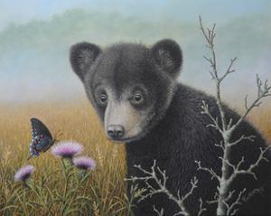 Curious Cub by Robert Wavra