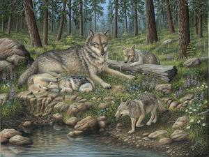 Grey Wolf Mother and Pups by Robert Wavra