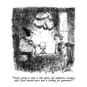"""""""You're going to meet a tall, dark, and handsome stranger, who's been burn?"""" - New Yorker Cartoon by Robert Weber"""