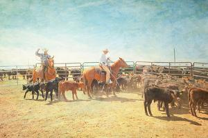The Calf Ropers by Roberta Murray