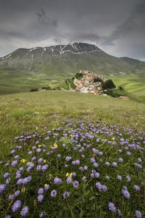 Colorful flowers in bloom frame the medieval village, Castelluccio di Norcia, Umbria, Italy by Roberto Moiola